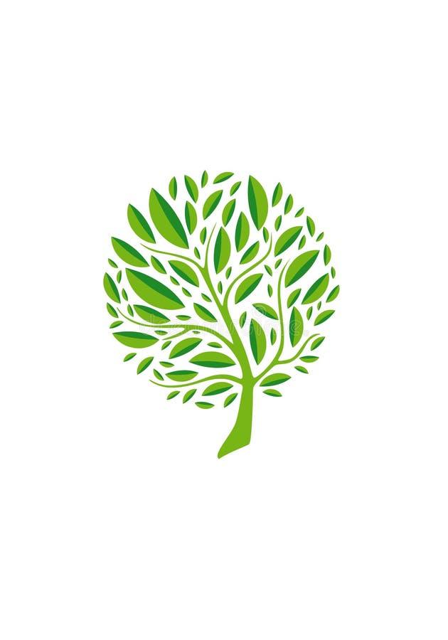 Логотип дерева в круге Эмблема дерева вектора бесплатная иллюстрация