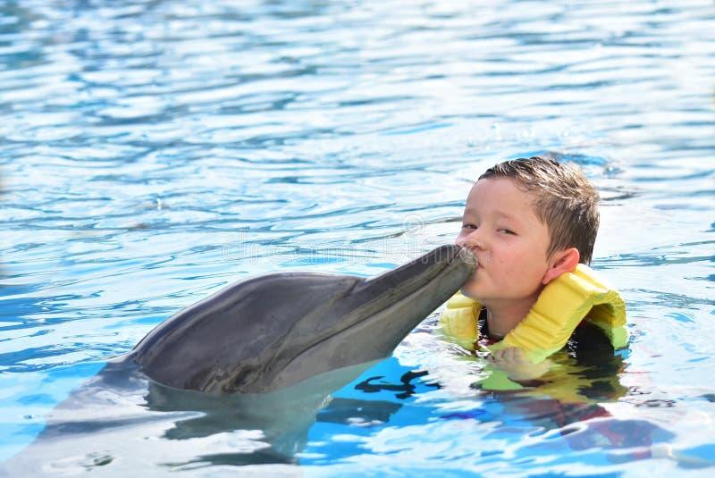 Мальчик целуя дельфина в бассейне стоковое фото rf