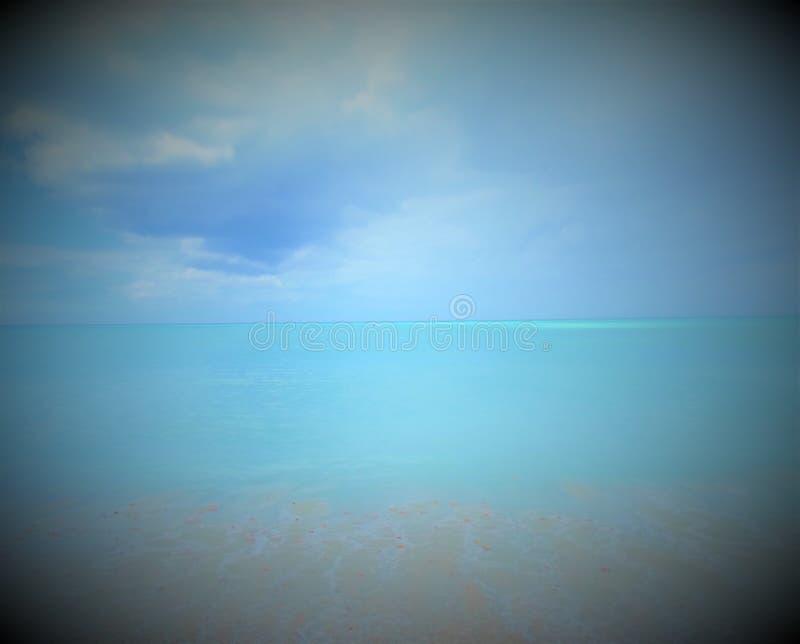 Мечтать пляжа острова Antiqua стоковые изображения rf