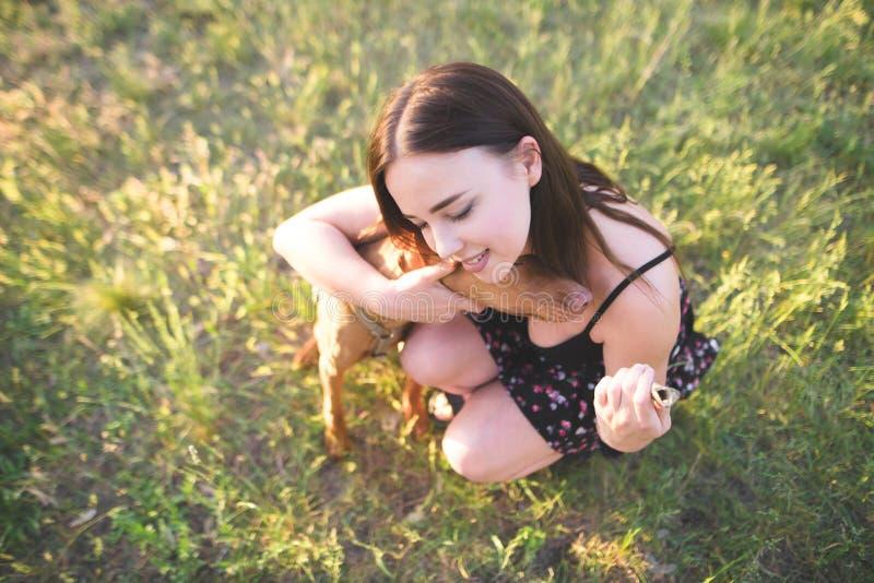 Милая счастливая девушка сидя на траве в парке и обнимая собаку Счастливая женщина обнимает собаку и улыбки стоковое изображение