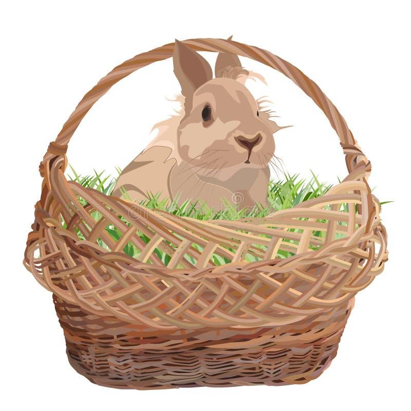 Милый декоративный кролик в плетеной корзине, иллюстрации вектора плоской иллюстрация вектора