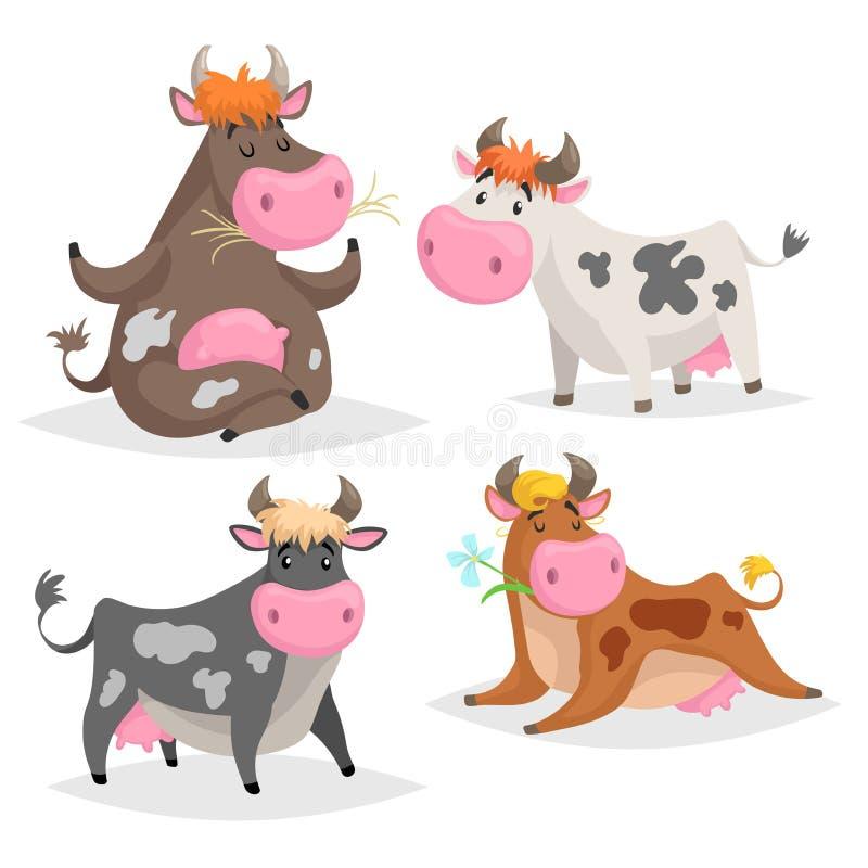 Милый различный набор коров Представления стоящ, лежать, расслабляющий и раздумье Жует зеленую траву Стиль дизайна ребенк мультфи иллюстрация вектора