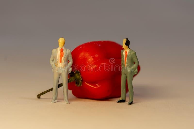 2 миниатюрных бизнесмена в положении костюма перед накаленным докрасна перцем Habanero Концепция конфликта дела стоковые изображения