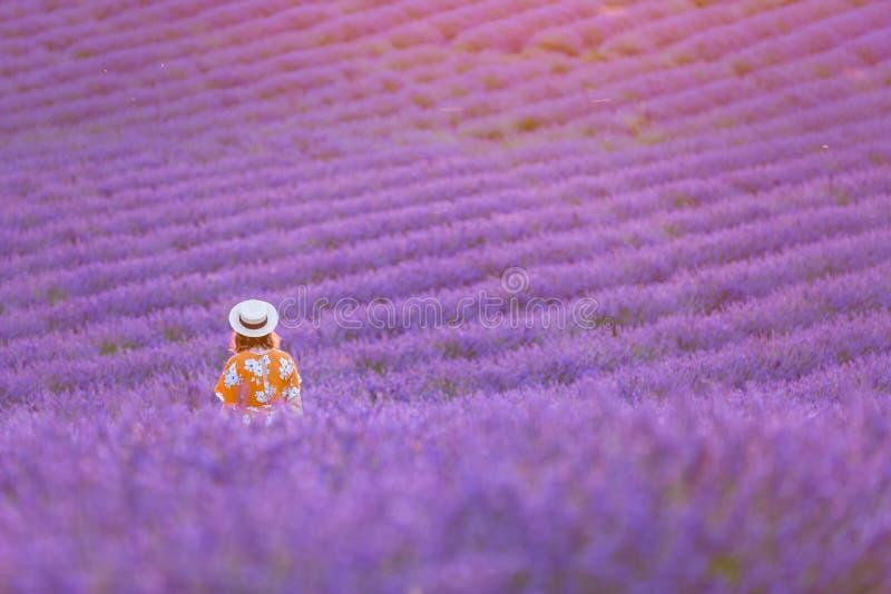 Молодая милая женщина в заходе солнца шляпы длинного оранжевого платья нося наблюдая в поле лаванды красивейшее canola fields сел стоковые изображения