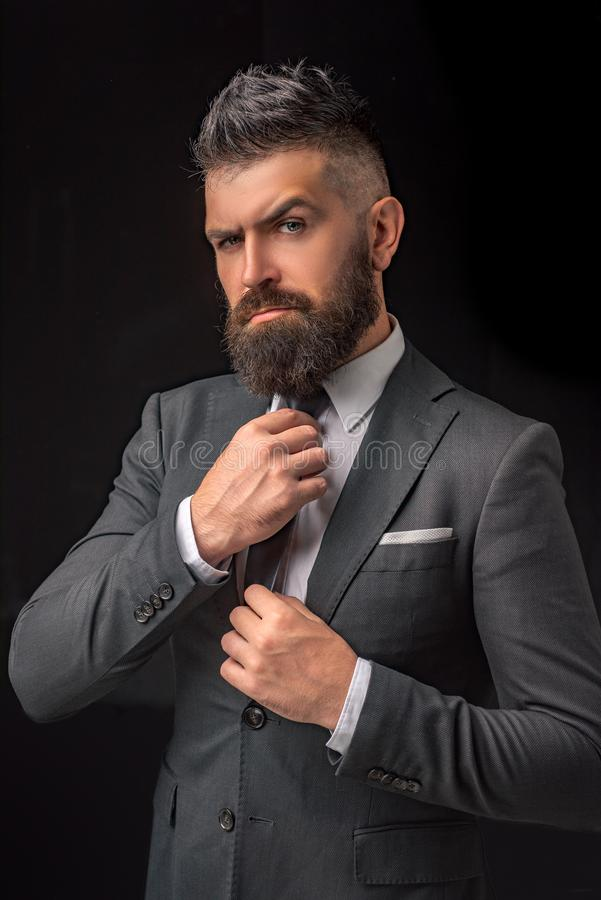 Мода бабочки Бородатый человек в темном сером костюме Человек в классических костюме, рубашке и связи Модель богатого человека Ро стоковые изображения