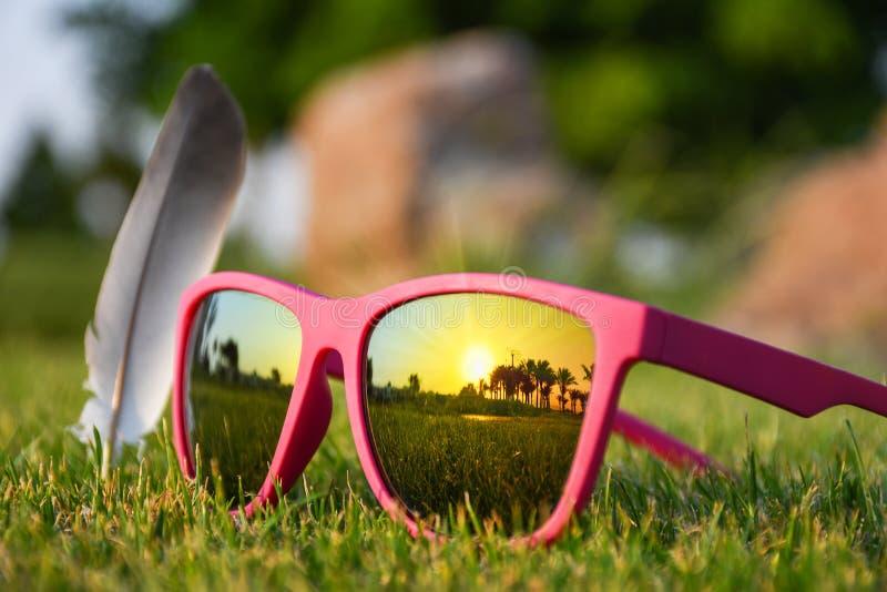 Модные розовые солнечные очки на зеленой траве стоковое фото