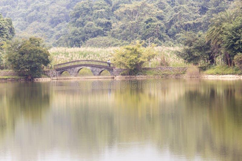 Мост на озере в национальном парке стоковые фотографии rf
