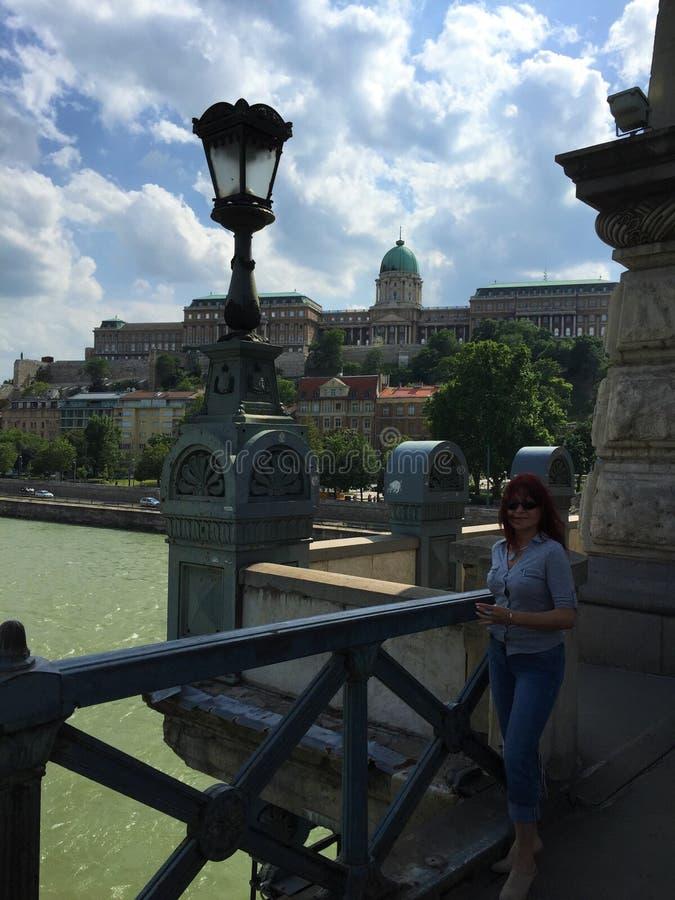 Мост Széchenyi цепной - Будапешт, Венгрия стоковые изображения rf