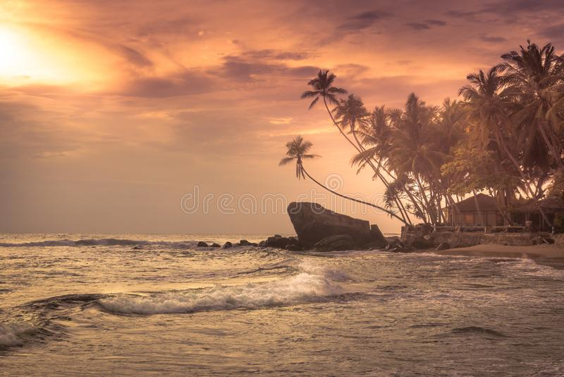 Море захода солнца пальм пляжа развевает предпосылка острова оранжевого неба солнца ландшафта береговой линии драматического троп стоковые фотографии rf