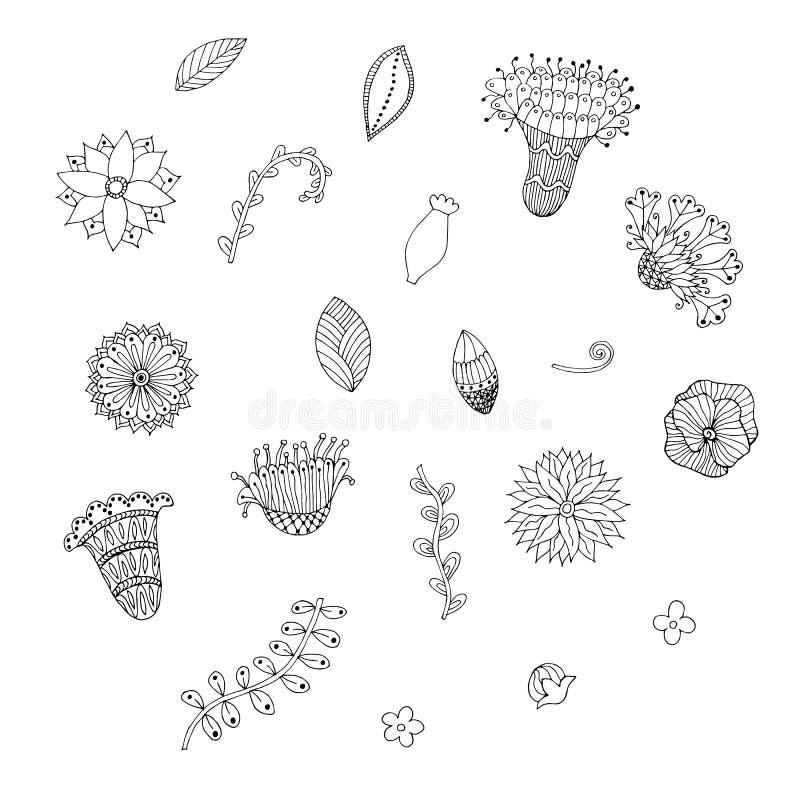 Набор doodle цветка руки вычерченный Monochrome цветки, листья, свирли иллюстрация вектора