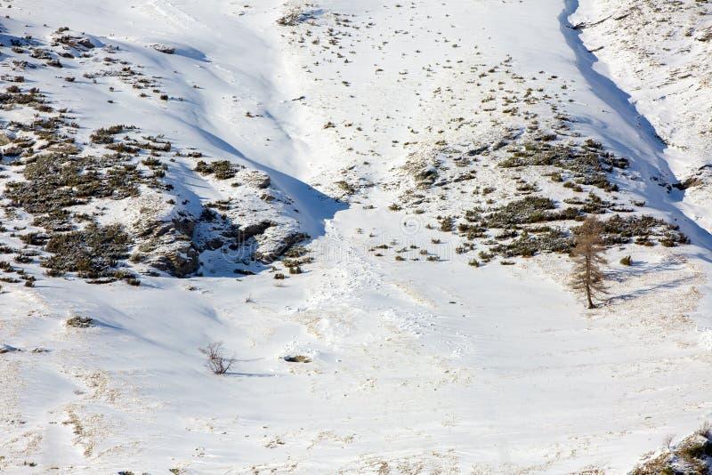 Наклон горы в зиму на заходе солнца стоковые фото