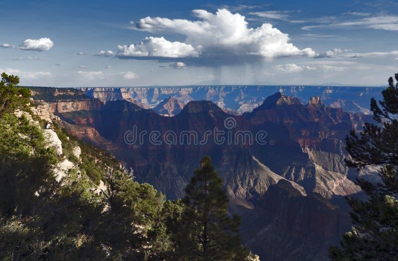 Наслаждаться взглядом на оправе гранд-каньона северной, Аризона, США стоковые изображения rf