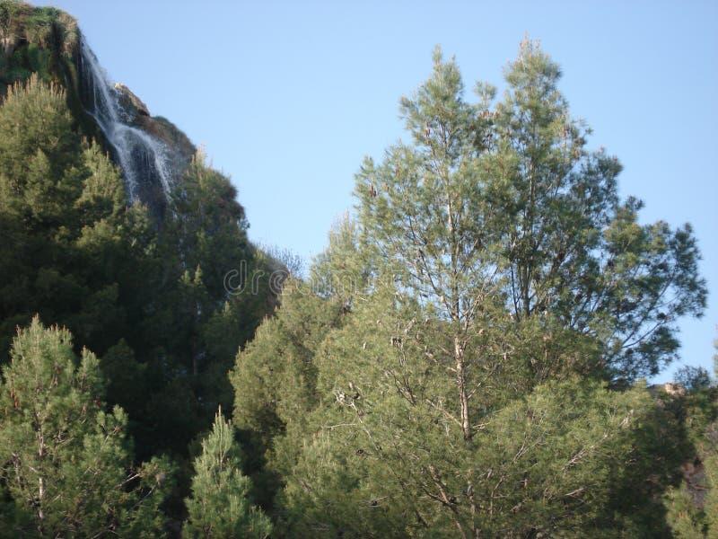 Небольшой водопад в Skoura, Sefrou, Марокко стоковое фото rf