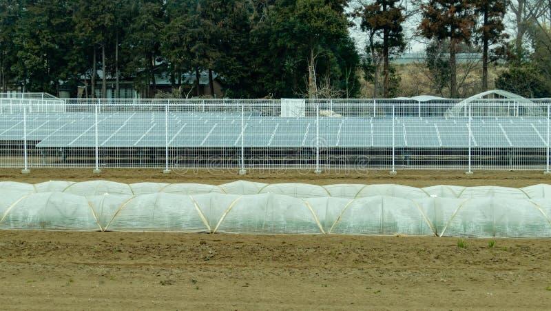 Панели солнечных батарей и парники тоннеля на сельскохозяйственных угодьях стоковое изображение rf