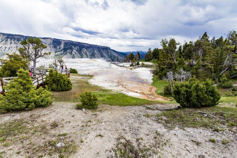 Панорама горячих источников Mamoth стоковые фотографии rf
