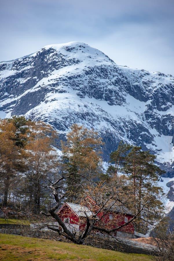 Панорама Nordkapp Ставангера стоковые фото
