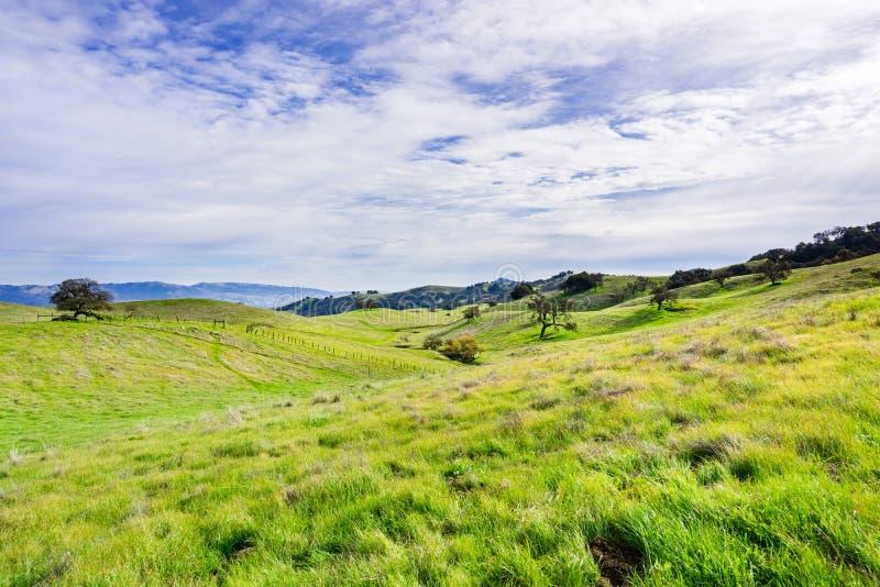 Панорамный вид над холмами и долиной заповедника открытого пространства долины койота, холма Моргана, южной области San Francisco стоковая фотография rf
