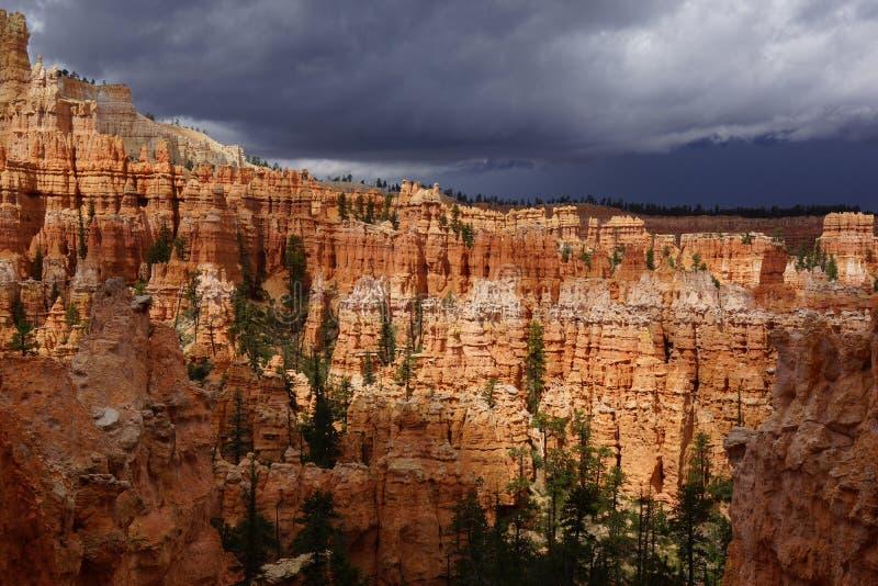 Пасмурный день в каньоне Юте bryce стоковые изображения rf