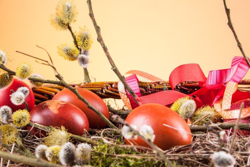 Пасха покрасила яичка стоковое фото rf