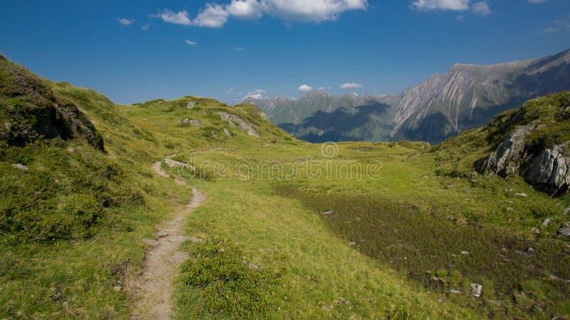 Пеший туризм горных вершин летом стоковая фотография rf