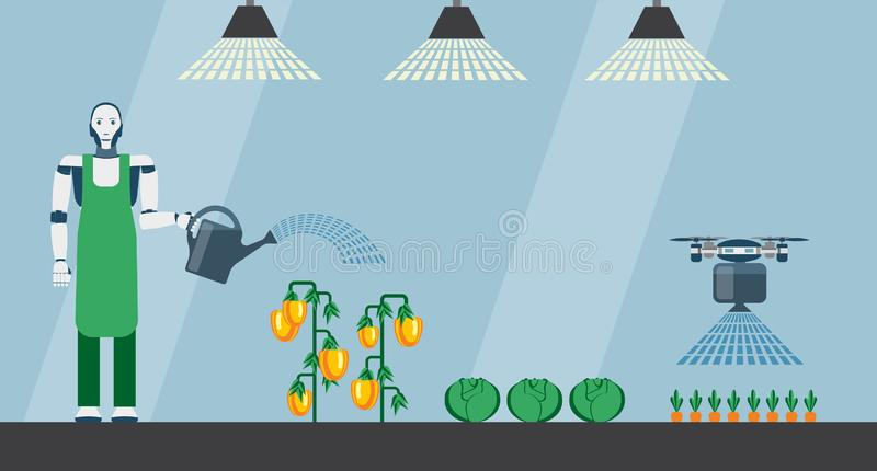 Robot and drone are watering vegetables stock illustration