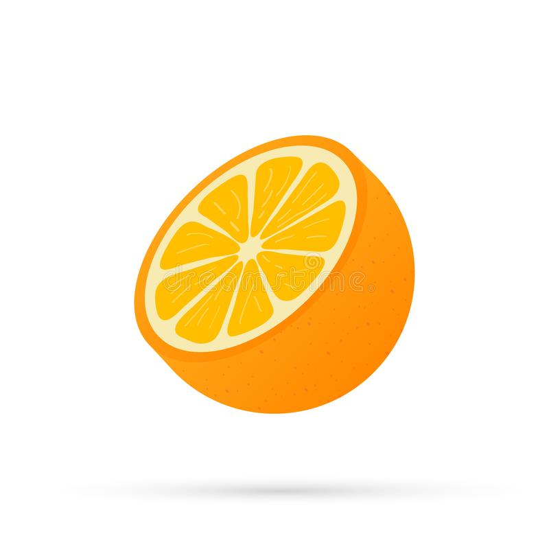 Orange with leaves whole and slices of oranges. Vector illustration of oranges. Orange with leaves whole and slices of oranges. Vector stock illustration of royalty free illustration