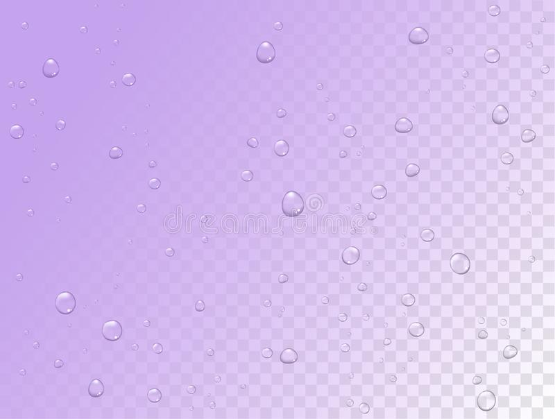 Vector rain water drops on transparent background. Pure droplets condensed. Realistic pattern on window glass surface stock illustration