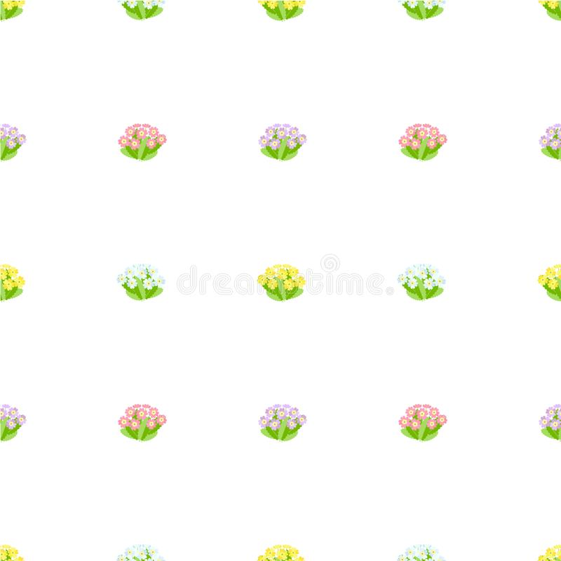 Primrose seamless pattern. Pink, blue, violet spring flowers, green leaves on white background royalty free illustration