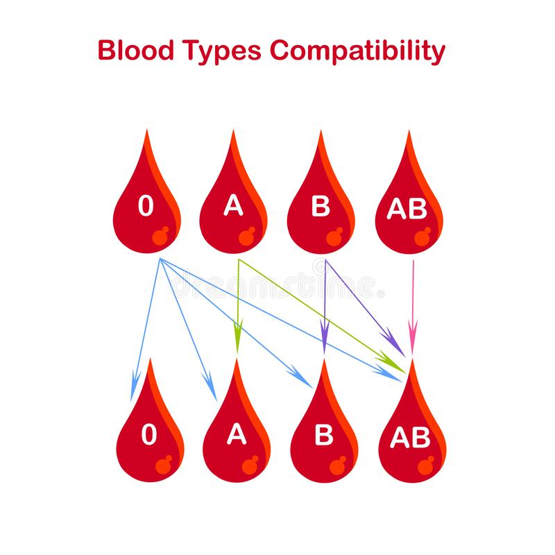 Blood types compatibility banner. Red blood drop 0, A, B, AB, arrows on white. Flat design vector illustration