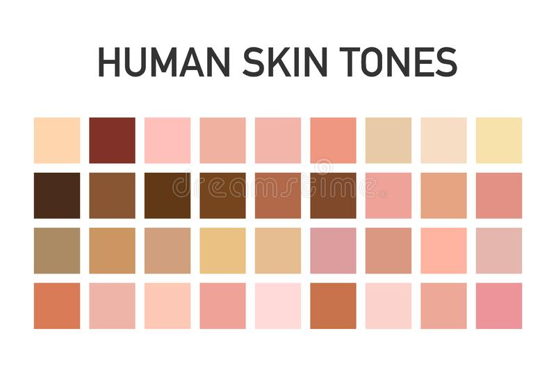 Human skin tone color palette set isolated on transparent background. Art design. Vector illustration. royalty free stock photography