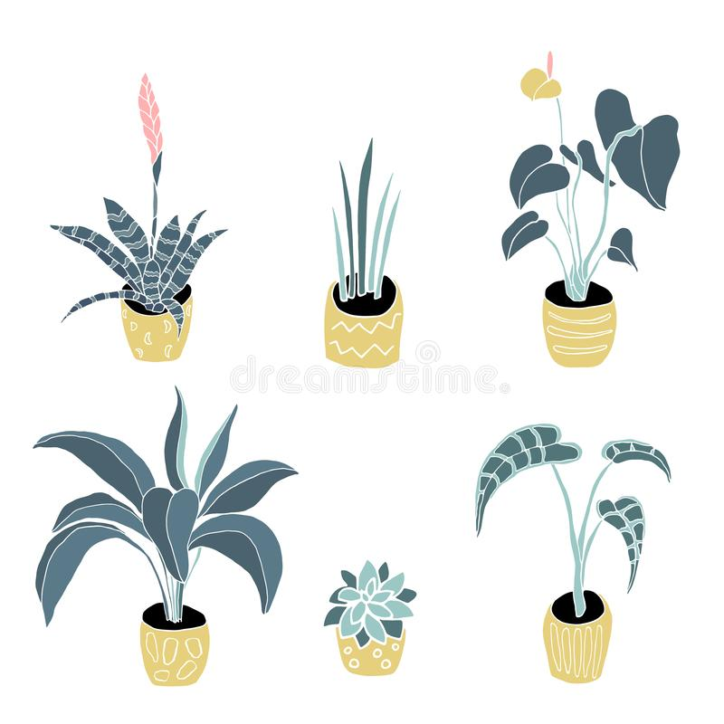 Isolated house plants in pots set. House plants in pots vector hand drawn illustration. Flat isolated houseplant royalty free illustration