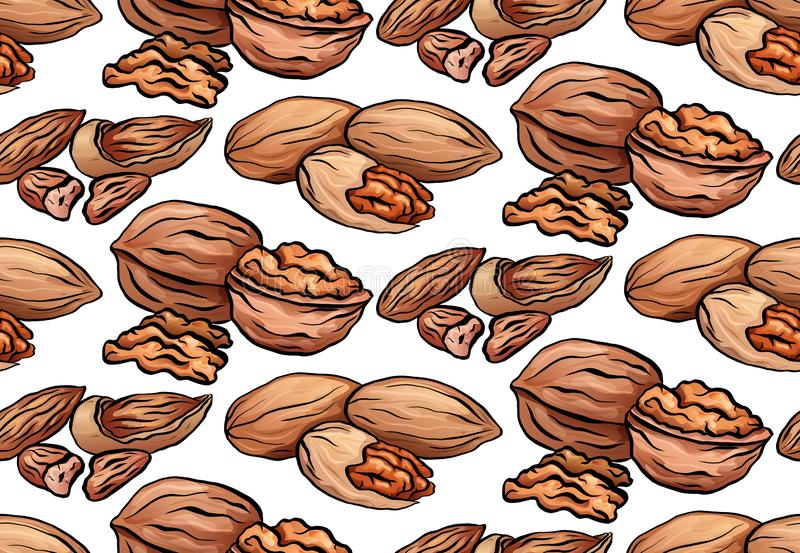 Seamless texture with colored cartoon nuts on a white background. Walnut, pecan and almond. Vector pattern vector illustration