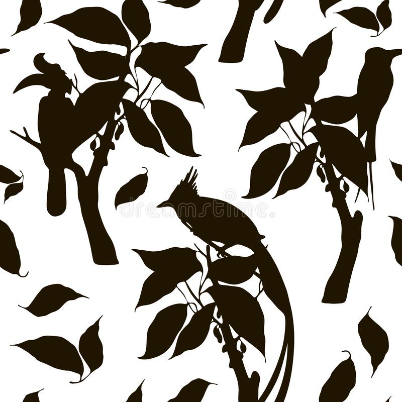 Silhouette pattern with exotic birds on trees. Vector silhouette pattern with rhinoceros hornbill, paradise flycatcher, bee eaters, branches, leaves stock illustration