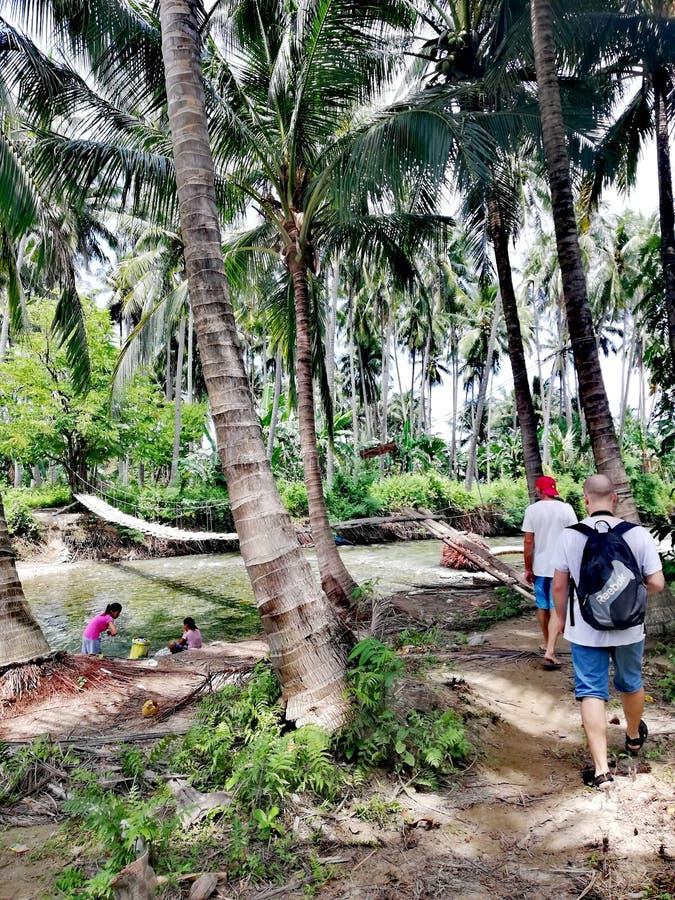 Пересекать мост качания над рекой в тропическом лесе на Mindoro, Филиппины стоковые фотографии rf