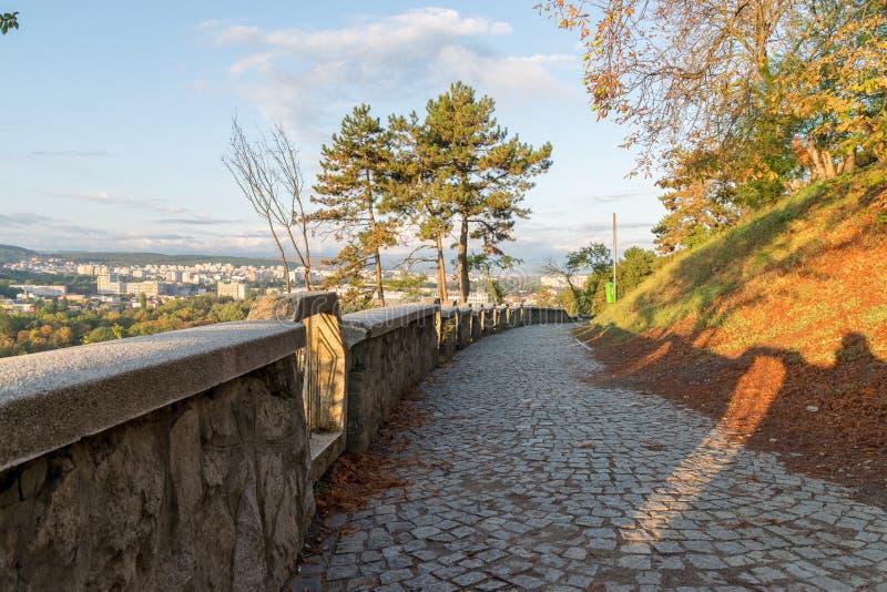 Переулок на парке Cetatuia, известном как холм Cetatuia, на солнечный день в cluj-Napoca, Румыния стоковые изображения