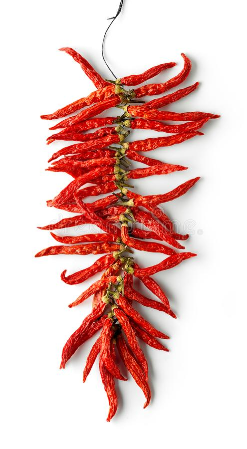 перцы высушенные chili горячие красные стоковые изображения