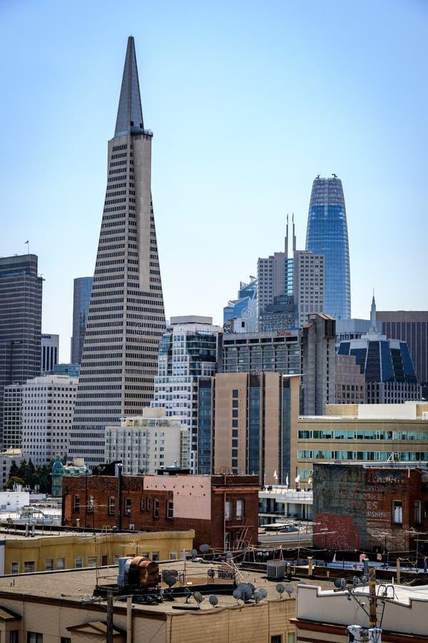Пирамида Transamerica выглядит более высокорослой чем башня Salesforce в горизонте Сан-Франциско стоковые изображения