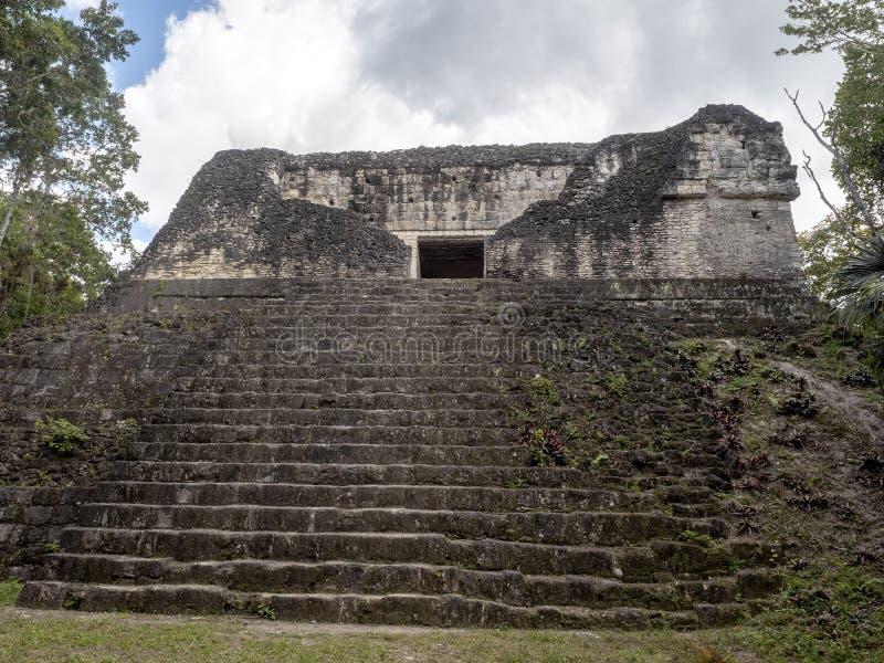 Пирамиды в городе нации самом значительном майяском парка Tikal, Гватемалы стоковые изображения