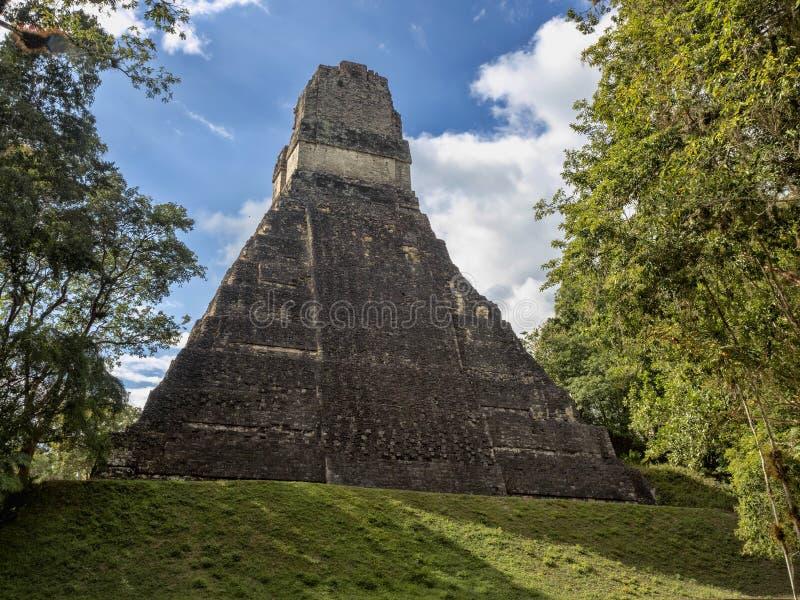 Пирамиды в городе нации самом значительном майяском парка Tikal, Гватемалы стоковые изображения rf