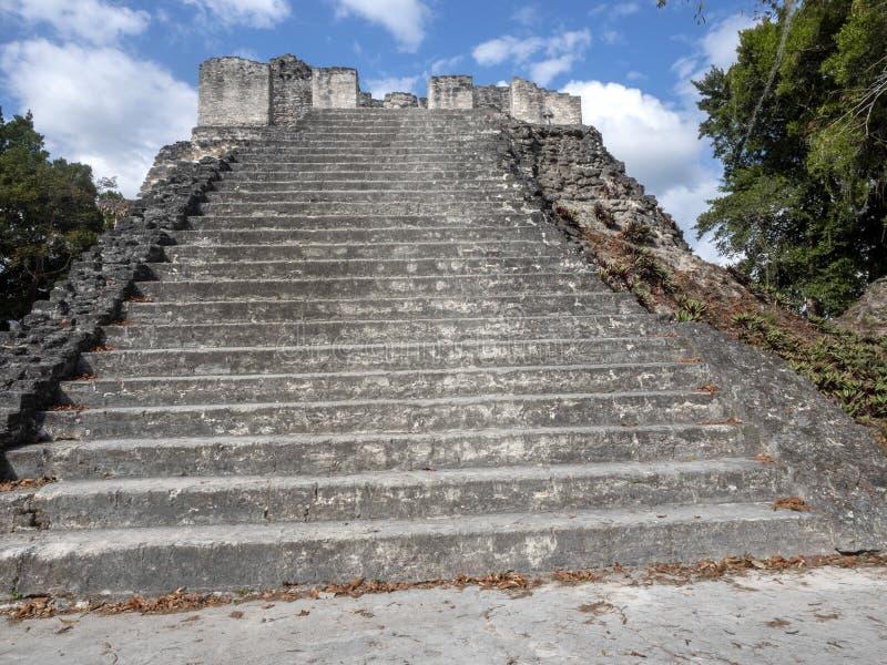 Пирамиды в городе нации самом значительном майяском парка Tikal, Гватемалы стоковая фотография