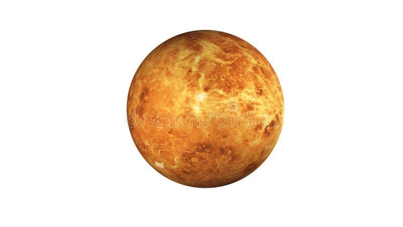 Планета Венеры в космосе изолированном на белизне Элементы этого изображения были поставлены NASA стоковое фото