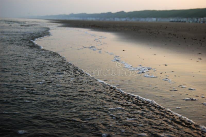 Пляж, море, береговая линия Голландии стоковая фотография rf