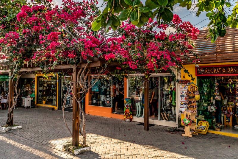 Пляж Порту de Galinhas, Ipojuca, Pernambuco, Бразилия - сентябрь 2018: улицы города стоковая фотография rf