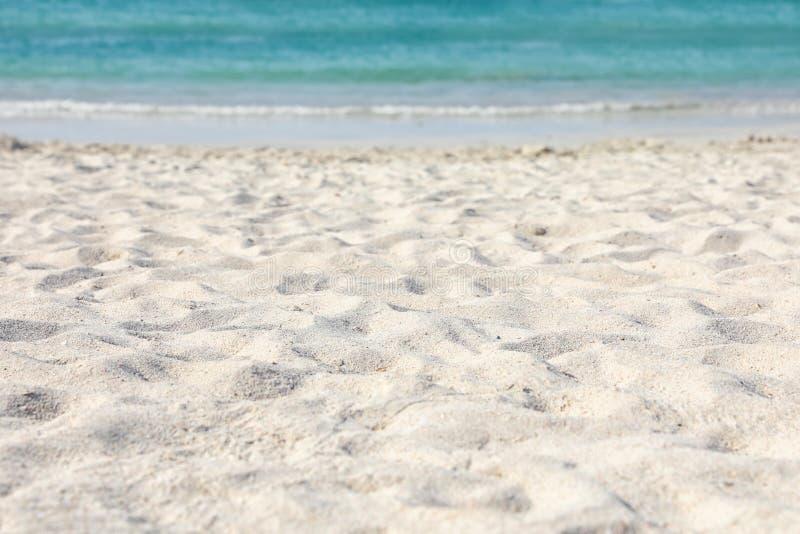 Пляж с чистым горячим песком стоковое изображение rf