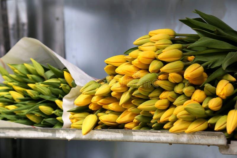Пук тюльпанов лежа на полке хранения в магазине флориста стоковые фото