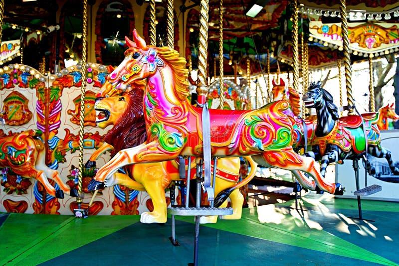 Пустая весел-идти-круглая езда в парке атракционов стоковое фото