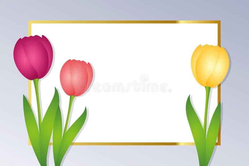 Пустая поздравительная открытка с золотой границей и красочными тюльпанами иллюстрация вектора