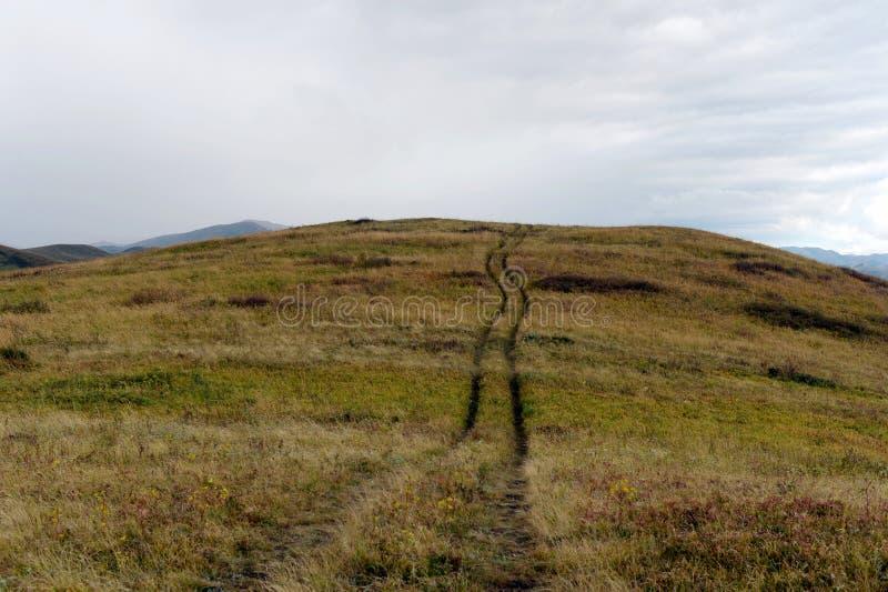 Предгорья осени Altai Западное Сибирь Россия стоковая фотография
