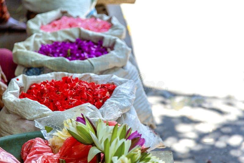 Предложения цветка в Бали стоковая фотография rf