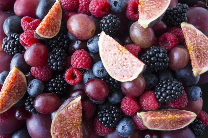 Предпосылка свежих овощей и плодоовощей Зрелые ежевики, голубики, сливы, розовые виноградины, поленики и смоквы Ягоды a смешивани стоковая фотография